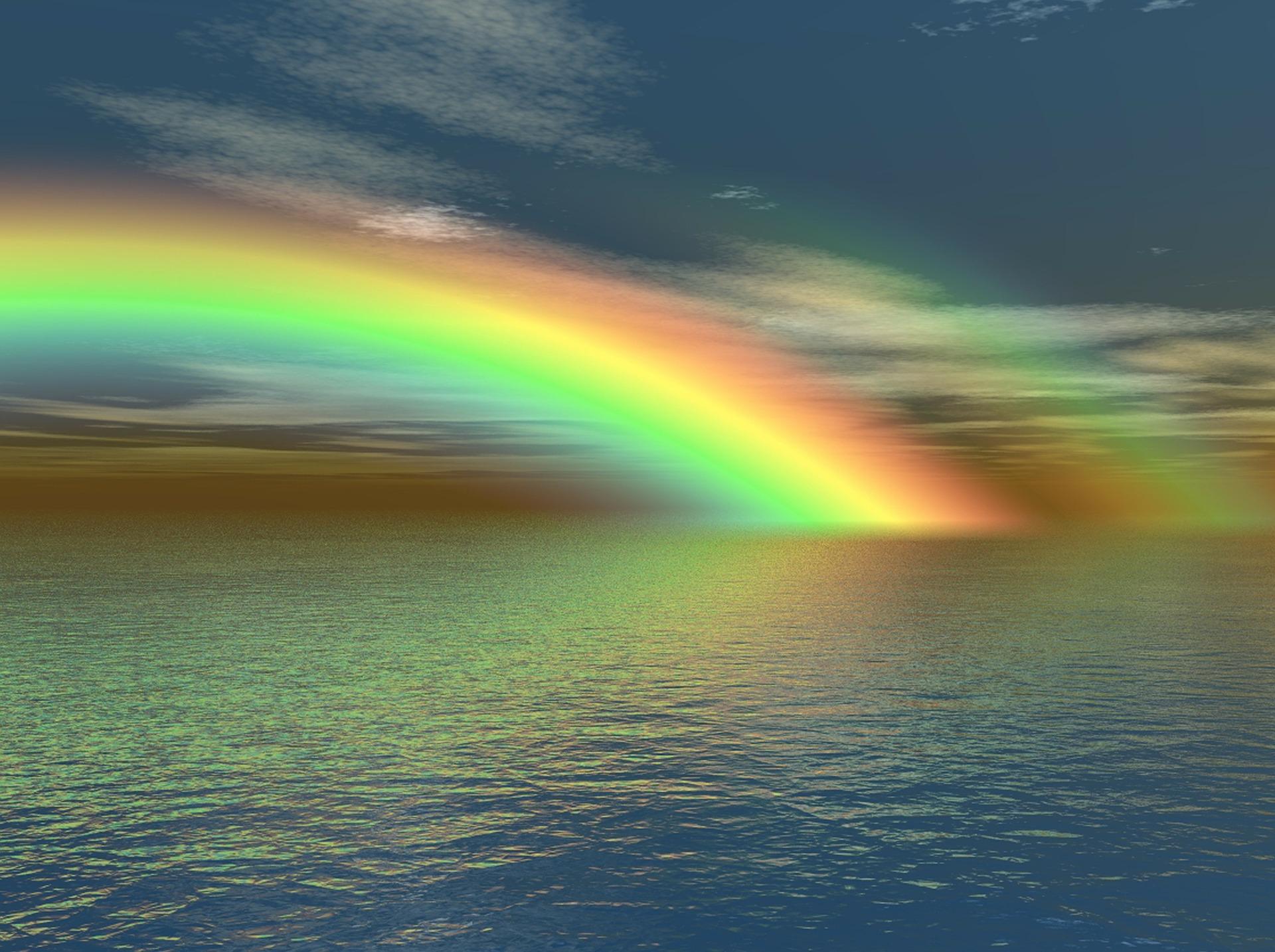 Br cken bauen regenbogen - Foto di animali dell oceano ...