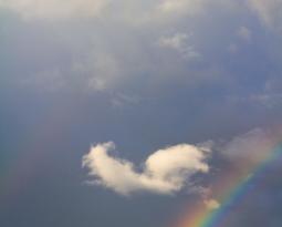 Im Entstehen – Regenbogengruppe Papillon Region Biel